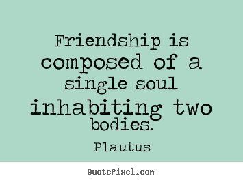 How to make picture quote about friendship - Friendship is composed of a single soul inhabiting two..