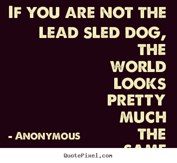 Quotes about life - If you are not the lead sled dog, the world looks..
